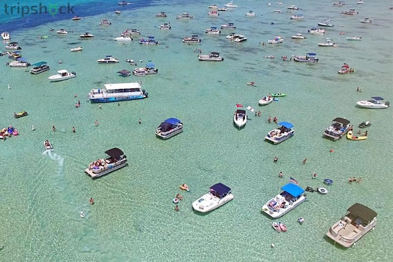 Ad'ventures' of the SunVenture I   Destin Dolphin Cruise