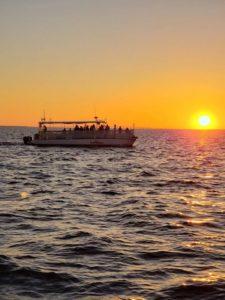 destin dolphin sunset cruise with sun set